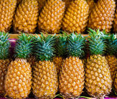 Fresh pineapple  for sale.  — Stock Photo