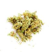 Marijuana isolated on white background — Stock Photo