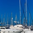 White yachts on anchor in harbor  — Stock Photo #41640315