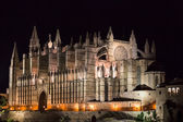 Cathedral of Palma de Mallorca La Seu night view — Stock Photo