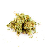 медицинская марихуана — Стоковое фото