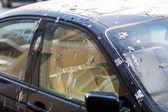 Bird droppings on car — Stock Photo