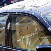 Bird droppings on car — ストック写真