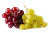 Grape isolated on white  — Stockfoto