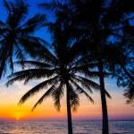 Beautiful sunset at a beach resort in tropics — Stock Photo