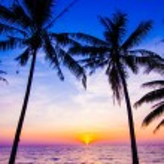 Sunset in tropics — Stock Photo #46725483