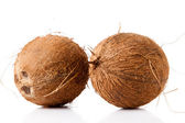 Brown coconuts — Stock Photo