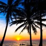 Sunset on the beach — Stock Photo #48560953