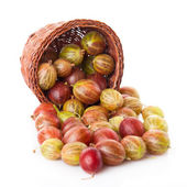Gooseberry in basket — Stock Photo