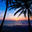Sunset on the beach — Stock Photo #49597821