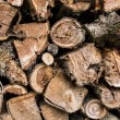 Closeup of chopped fire wood stack — Stock Photo #50676593