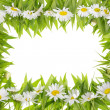 Daisies meadow frame concept — Stock Photo #12785633