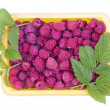 Real summer raspberries — Foto de stock #12785661