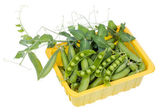 Green real fresh pea in box isolated — Stock Photo