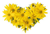 Corazón floral amarillo — Foto de Stock