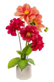 Minimalistic bouquet - mini dahlia red flowers — Stock Photo