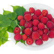 Red berries on white paper plate — Stock Photo