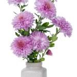 Minimalistic bouquet - mini pink chrysanthemums flowers — Stock Photo