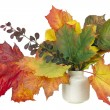 Minimalistic  bouquet  - autumn maple leaves — Stock Photo
