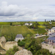 Stock Photo: French vineyards and town