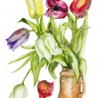 Tulips flowers in ceramic pot isolated — Stock Photo