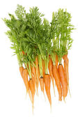 Rural ecological ugly carrot — Foto de Stock