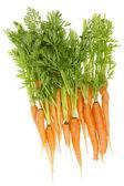 Zanahoria feo ecológico rural — Foto de Stock