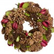 Christmas garland isolated — Stock Photo