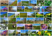 Jarní čas v rusku — Stock fotografie