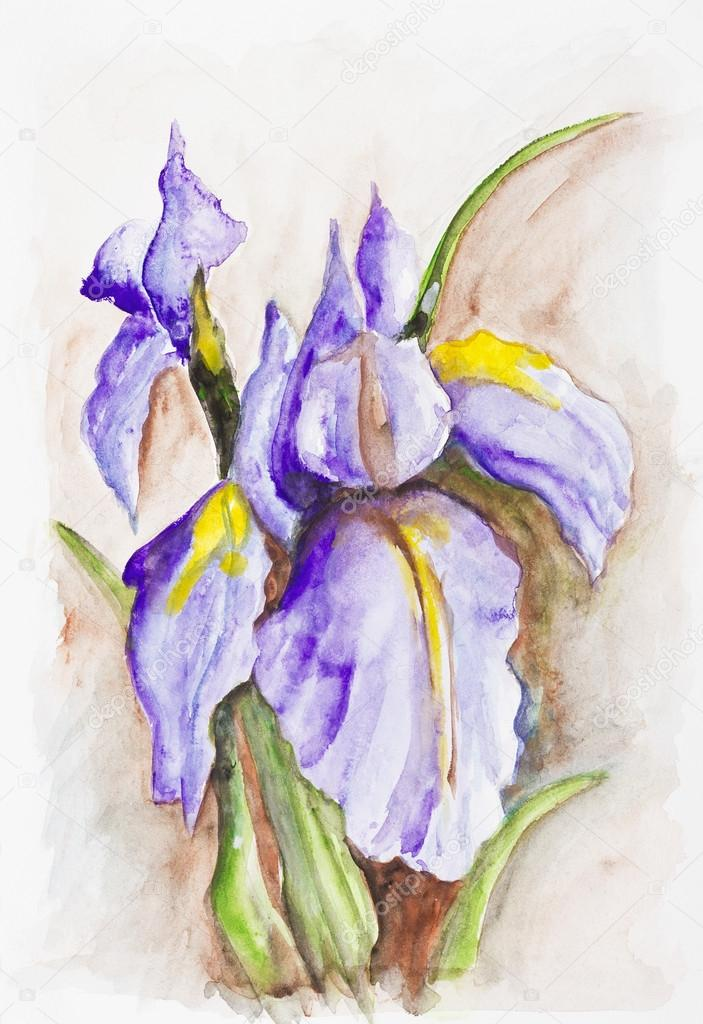 Irises Flower Painting Irises Blue Spring Flowers