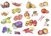 Set aquarelle de fruits et légumes — Photo