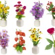 Minimalistic floral bouquets set — Stock Photo #26070425