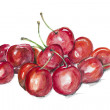 Magic ripe cherry — Stock Photo