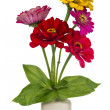 Stock Photo: Minimalistic bouquet - mini zinniflowers