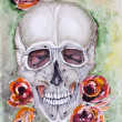 Skull and roses  — Stock Photo