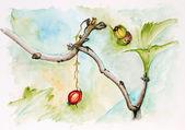 Last autumn berry concept — Stok fotoğraf