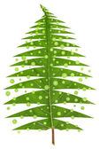 Christmas tree made from leaf — Stock Photo