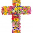 Flowers of a cross of Jesus  — Stock Photo #51722785