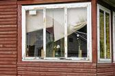 Window with daisies — Stock Photo