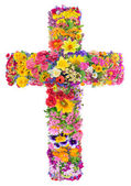 Flowers of a cross of Jesus  — Stock Photo