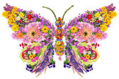 Butterfly from summer flowers — Stock Photo