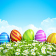Easter Greeting Card Background with decorated Easter eggs on meadow. — 图库照片