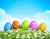 Fondo de tarjeta de felicitación de pascua con huevos de pascua decorados en prado. — Foto de Stock
