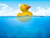 Yellow duck in open sea — Stock Photo