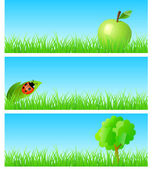 Vector triptych of objects on detailed grass. — Stock Vector