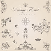 Vintage floral vector design elements collection. — Stock Vector