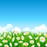 Flower field background — Stock Vector #5604027