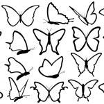 Butterfies — Stock Vector