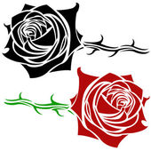 Rose illustration — Stock Vector