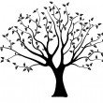 Tree silhouette — Stock Vector #16302827